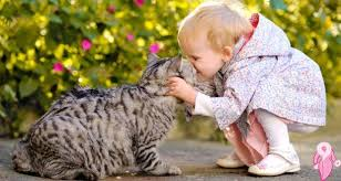 Evcil Sevgisinin Çocuk Gelişimine Etkisi